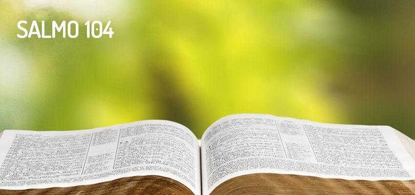 Salmo 104, un himno de alabanza a Dios