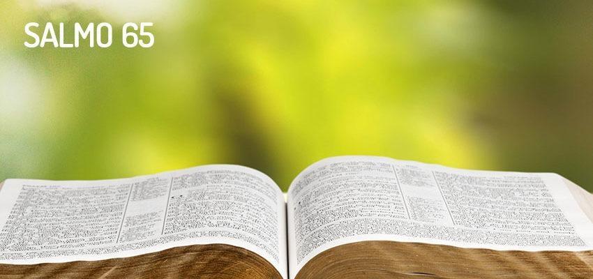 Salmo 65, reconocimiento por la intervención en tu vida