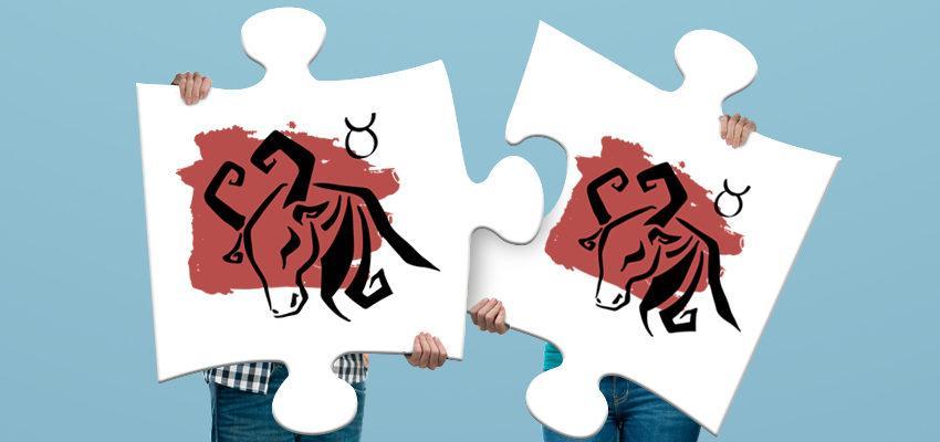 Compatibilidad de los signos entre tauro y tauro: dosis de dulzura y de mucho amor