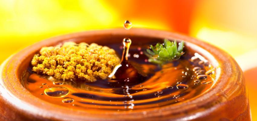 Bondades del aceite de palma