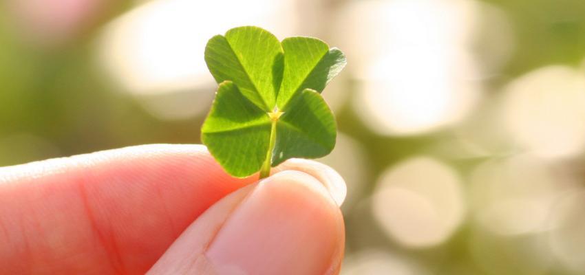 El potencial de los amuletos de la suerte