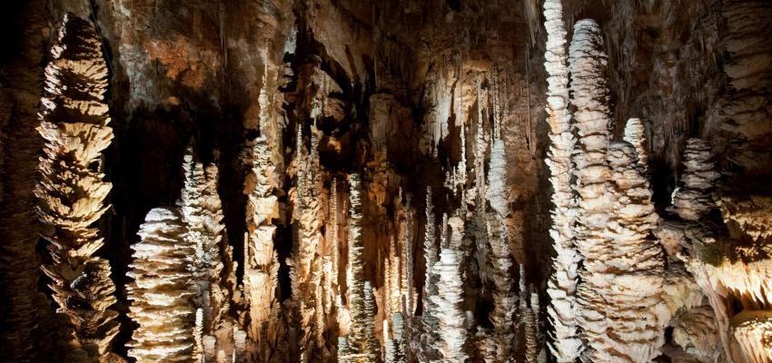 Aragonite: propiedades, usos y beneficios