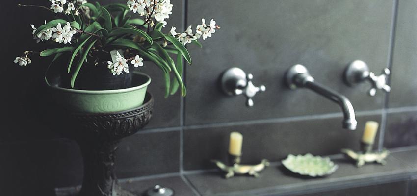 7 baños espirituales para limpiar tu cuerpo y tu mente