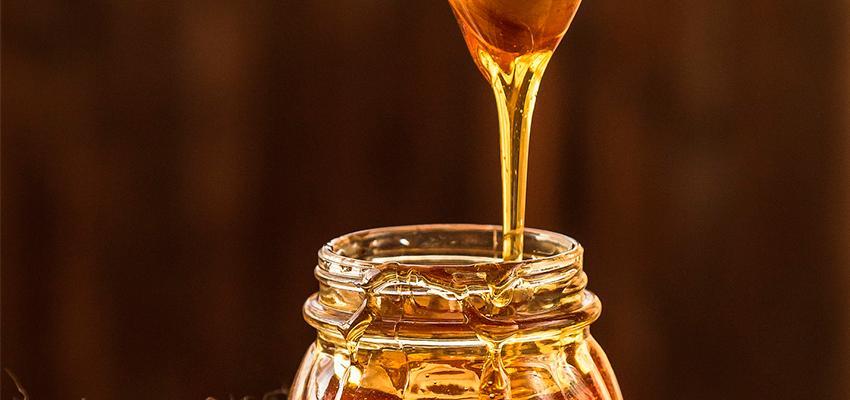 Beneficios de consumir jalea real