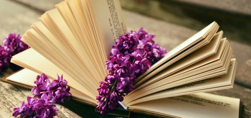 Bibliomancia, leer el futuro a través de los libros