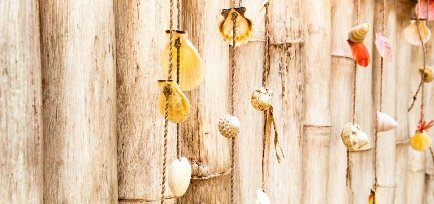 Búzios para 2018, aprenda a consultar los caracoles para el nuevo año