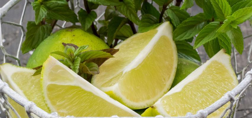 Conoce los mejores remedios naturales con limón