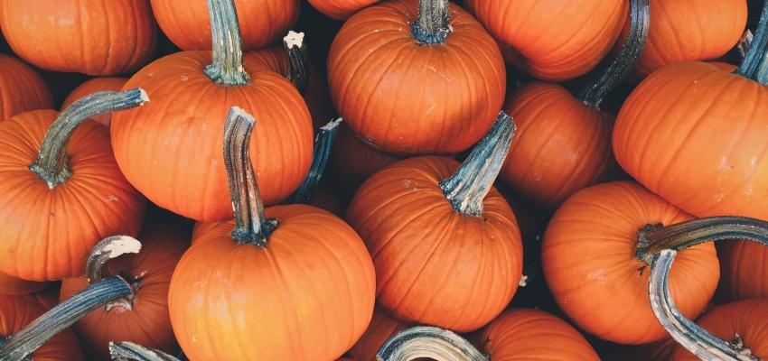 ¿Cuándo es el Halloween? Historia y origen de esta celebración