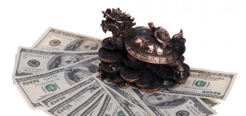Tortuga Cabeza de Dragón, poderoso amuleto del Feng Shui