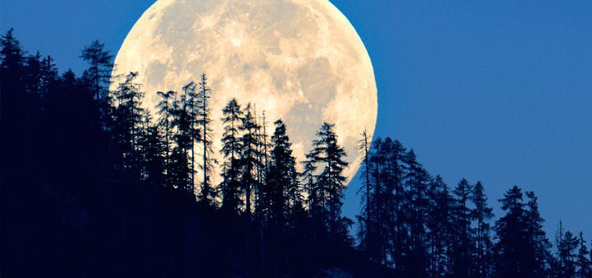 ¿Sabes qué representa el signo lunar?