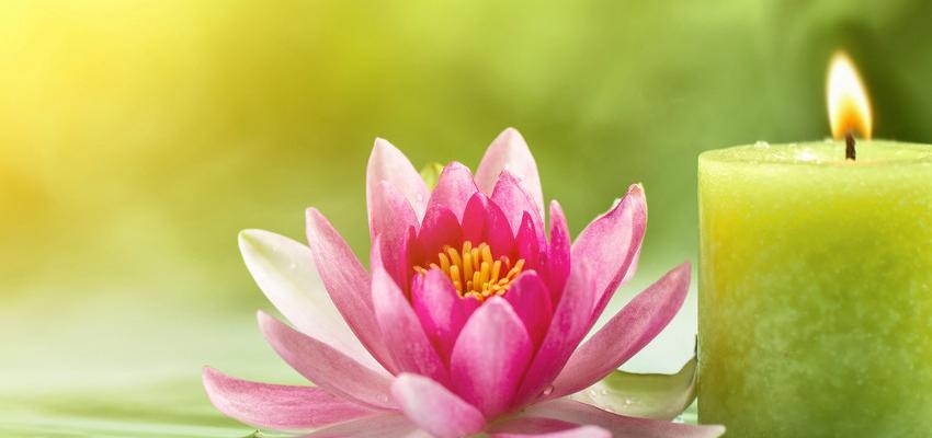 Elementos del Feng Shui, conoce los 5 elementos energéticos