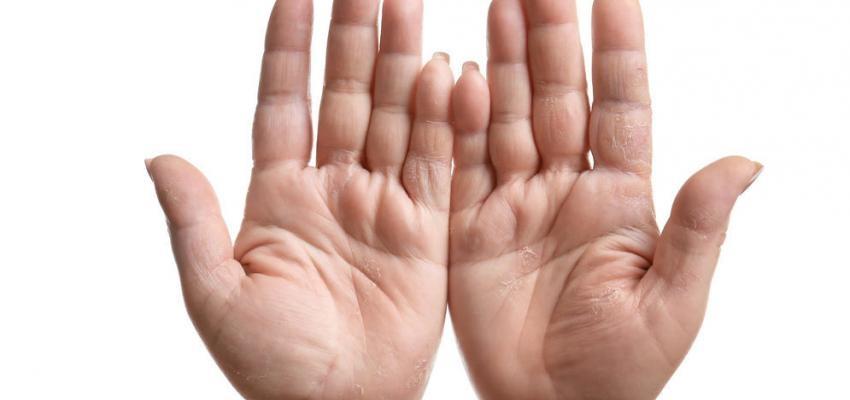 Descubre el futuro leyendo tus líneas de la mano