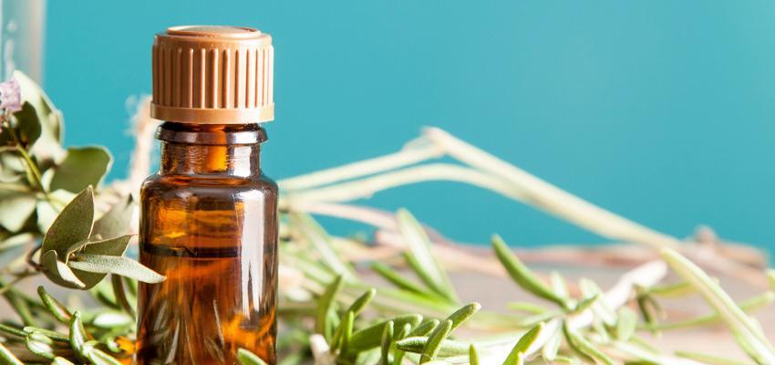 Fitoterapia, el tratamiento natural más popular de la medicina alternativa