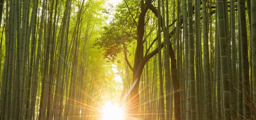 9 frases de espiritualidad para reflexionar
