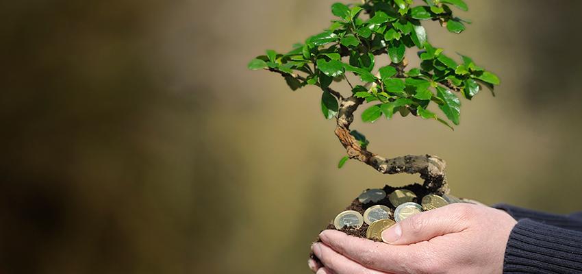 Hechizos para atraer el dinero y la prosperidad