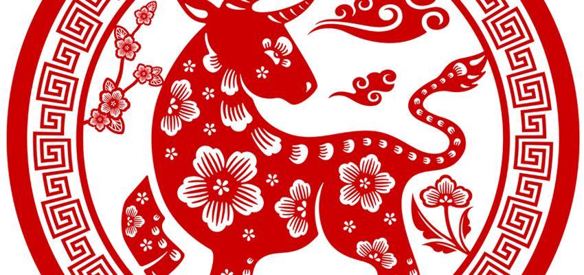 El Búfalo o Buey y sus características en el Horóscopo Chino