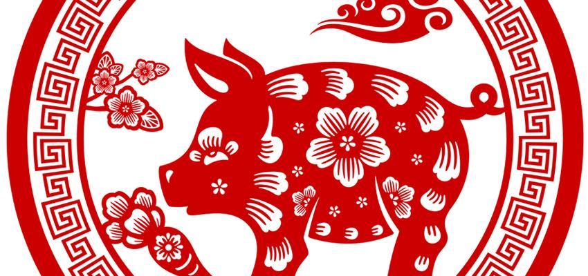 El Cerdo o Jabalí y sus características en el Horóscopo Chino