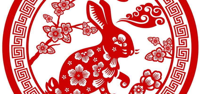 El Conejo o Gato y sus características en el Horóscopo Chino
