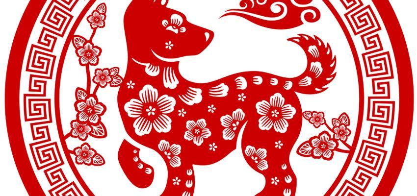 El Perro y sus características en el Horóscopo Chino