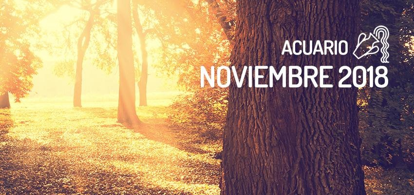 Horóscopo de Acuario para Noviembre 2018