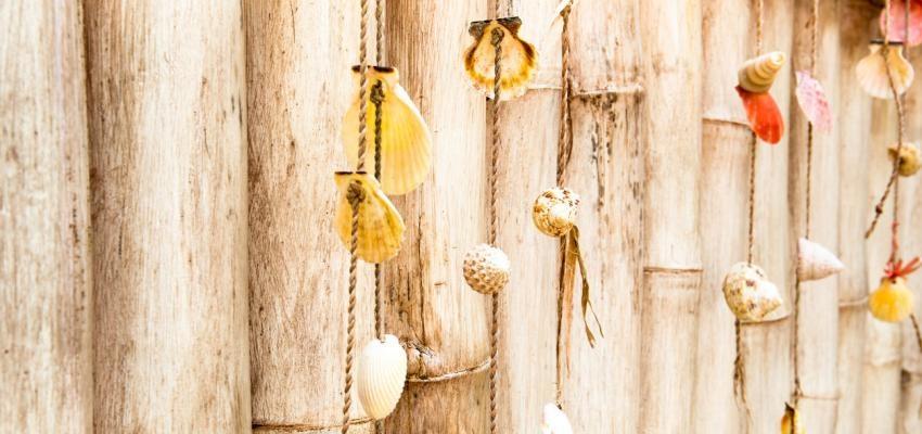 Interpretación de los caracoles en el juego de búzios