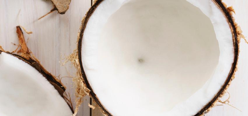 Jabón de coco. Descubre sus propiedades y cualidades