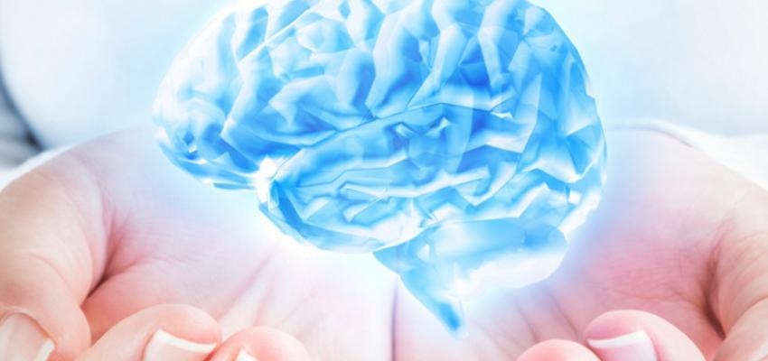 ¿Qué es la gimnasia cerebral? Mejora tu memoria