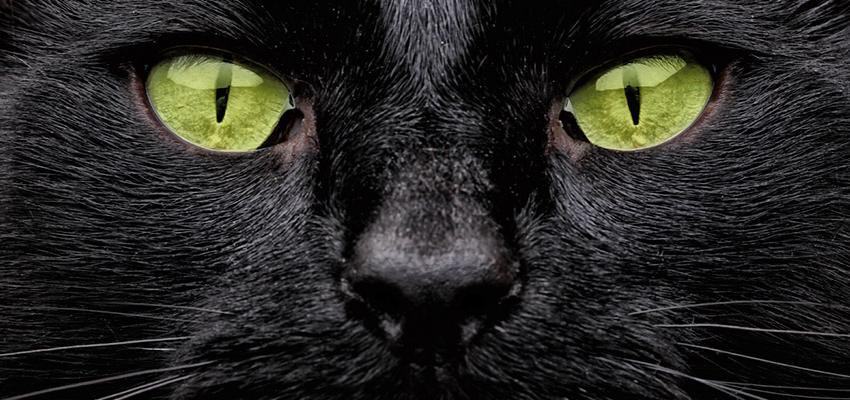 ¿Mala suerte o superstición el viernes 13?