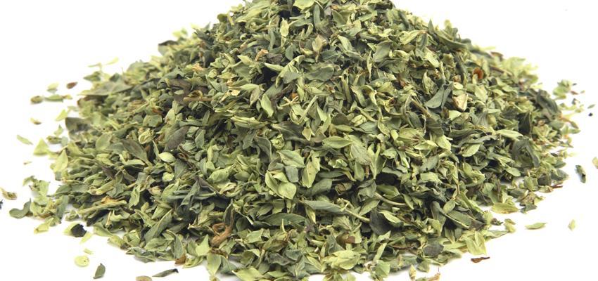 Orégano, la hierba con propiedades y usos medicinales