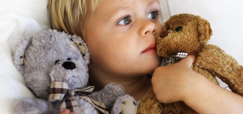 Prepara un Osito de Protección para Niños