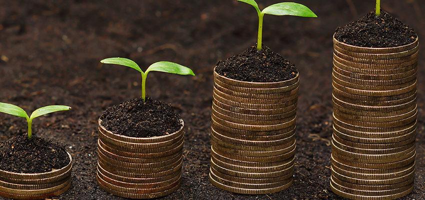 Ritual para atraer dinero en el negocio ¡Encuéntralo aquí!