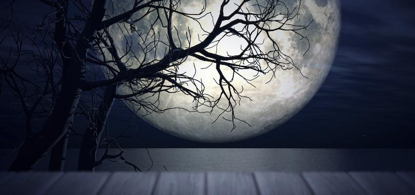 ¿Cómo utilizar la energía de la Luna y el poder de sus fases?