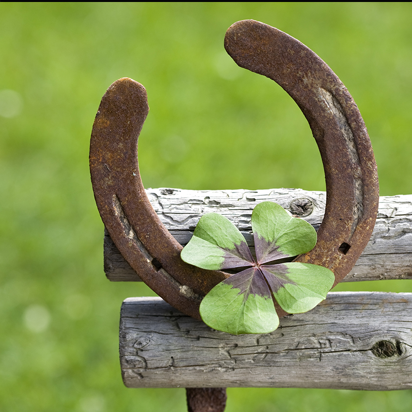 Sabes c mo colocar la herradura de la suerte wemystic - Como se quita la mala suerte ...