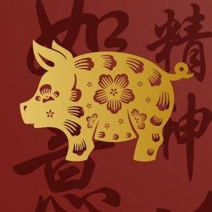 Horóscopo Chino 2018 para Cerdo o Jabalí