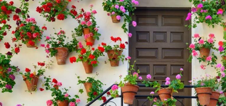¿Cuales flores se utilizan en la terapia de flores de Saint Germain?