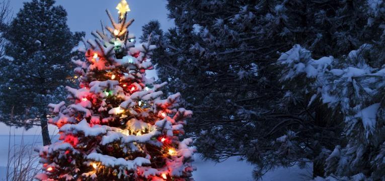 ¿Cómo recibir al Espíritu de la Navidad?