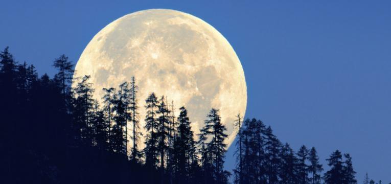 Cuando está la Luna en Tauro