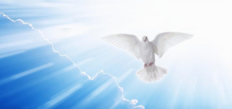 Comienzo del día del Ángel de la Guarda