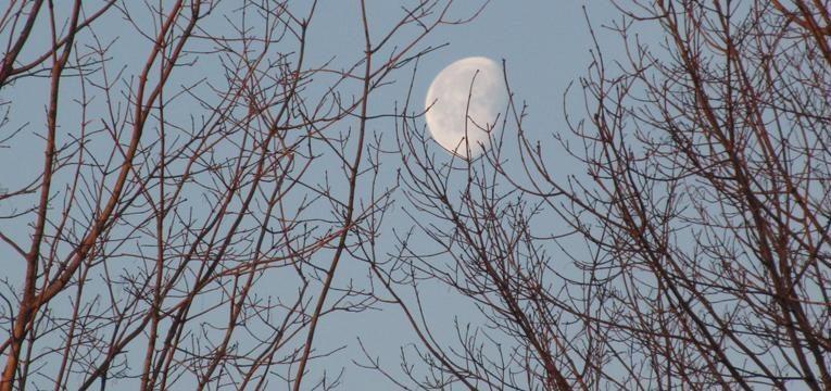 luna en la casa 9