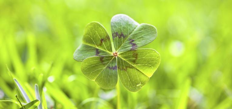 Amuletos de la suerte populares