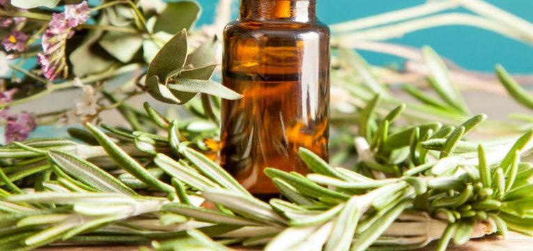 Usos del aceite de árbol de té