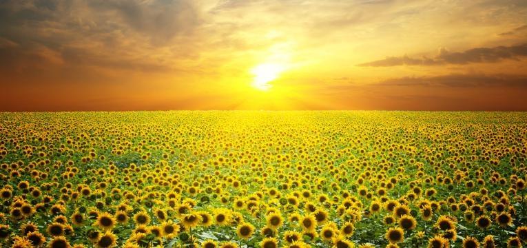 Recargar energías de los cristales con el sol