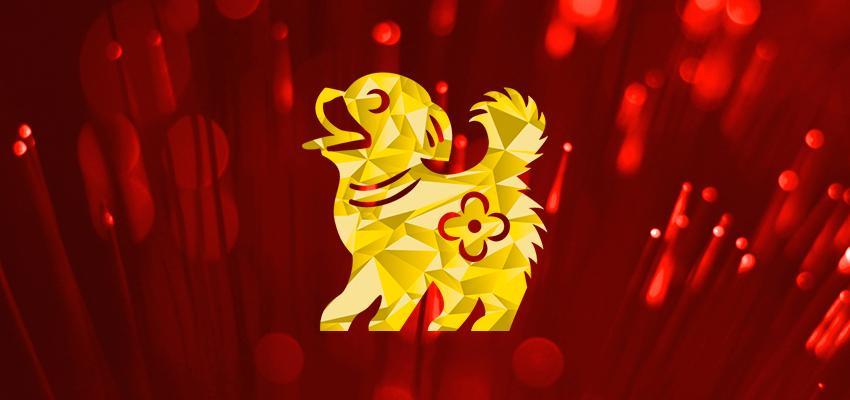 Resultado de imagem para ano do cão chines