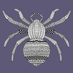 Tótem - Animal Interior - Araña